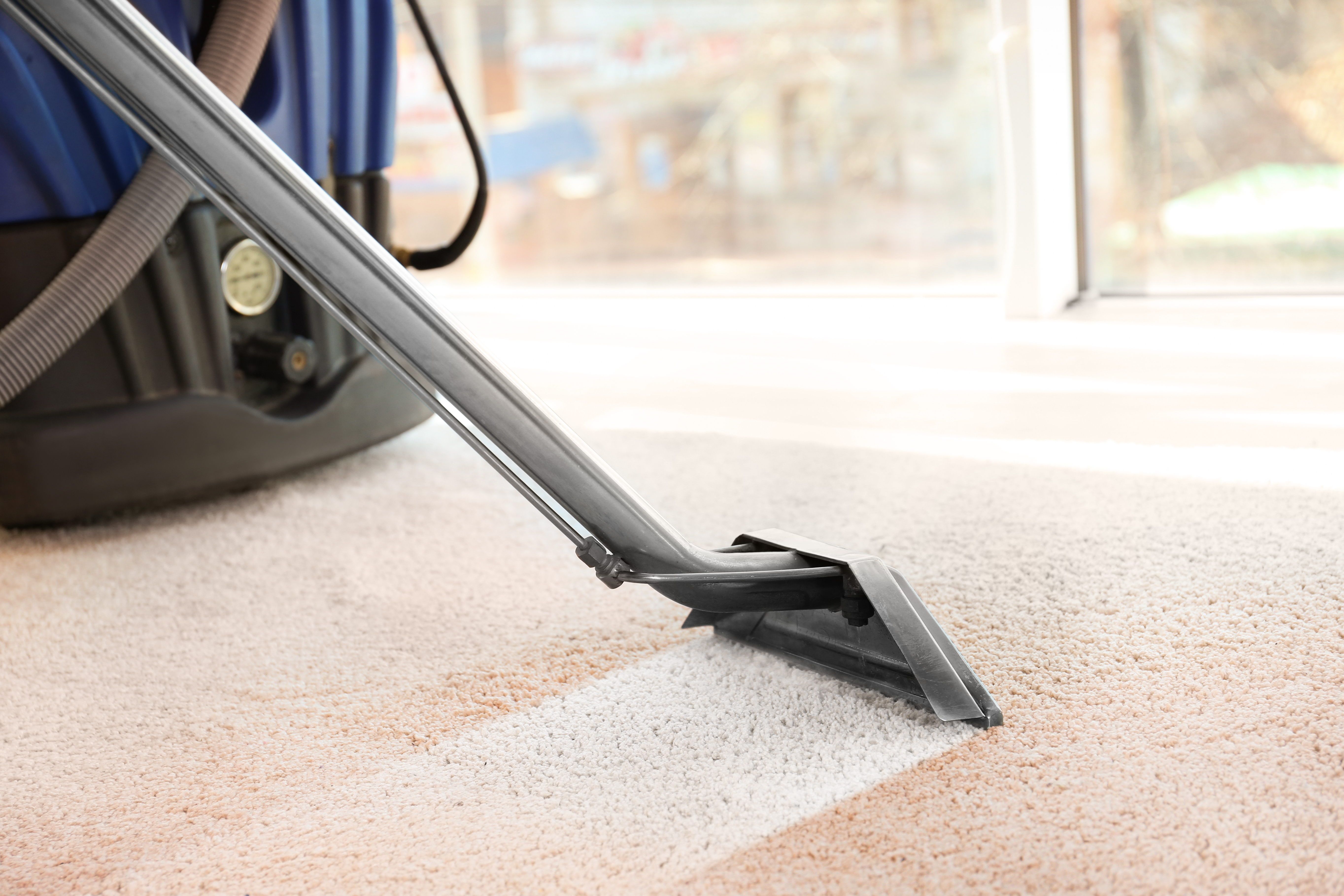 carpet cleaning, business